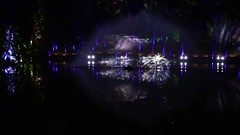 2018 - 4.10.18 Water Show - Enchanted Forest  (2) (marie137) Tags: forest lights trees show marie137 bright colourful pitlochry treeman attraction visit entertainment music outdoors sculptures wicker food drink family people water animation