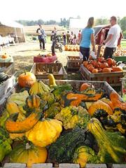 DSC07698 (kurmanstaff) Tags: kurmanphotography halloween dusselfarm kentohhalloween halloween2018 pumpkinsandsquash outdoorfestival