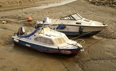 Waarde (Omroep Zeeland) Tags: getijdenhaventje waarde westerschelde slik vissersbootjes zeeuws zeeland