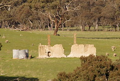 ruin by the Lachlan Valley Way, NSW, Australia (Hipster Bookfairy) Tags: local history
