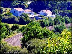 Rincón gallego (marmimuralla) Tags: verde galicia recuncho vía tren