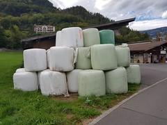 Wilderswil scenes 123 (SierraSunrise) Tags: switzerland wilderswil europe bale round hay plastic