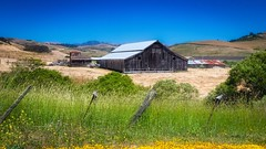 San Gregorio Barn 2 (CDay DaytimeStudios w/1,000,000 views) Tags: barn bluesky california countryroad countryside oldbuildings oldhouse pacificcoast pacificcoasthighway road sangregorio sanmateocoast sanmateocounty stageroad stagestop trees