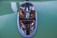 The need for speed (sniggie) Tags: classicautomobile classiccar hoodornament vintageautomobile marioncounty kentucky