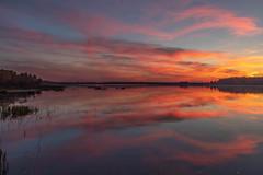 Sunset (raymond_zoller) Tags: abend landscape sonnenuntergang spiegelung wolken clouds eau evening landschaft odraz reflection sunset wasser water woda вечер вода закат облака одраз отражение пейзаж