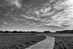 _DSC5675zwwfb (rvdmeeren) Tags: clouds sway empty lonely landscape belgium flanders zulzeke monochrome et noiretblanc blackandwhite