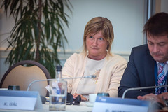 A23A8713 (More pictures and videos: connect@epp.eu) Tags: epp summit european people party brussels belgium october 2018 kinga gál vice president