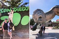 San Diego 2018 (jamiedaily) Tags: sandiego family familyblog familyteam familyreunion jamieshugart travels traveling travellife travelblogger exploremore explore california explorecalifornia exploresandiego sandiegolife southerncalifornia willshugart willandjamie wamiesworld wamieswanders wamieswanders2018 sandiegozoo zoo
