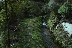 ACEQUIA RUTA DE TELLO (Asomados al Mundo) Tags: lanjarón tello alpujarra alpujarras acequia agua