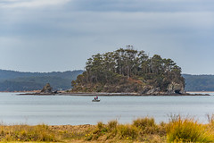 Island in the Cove with a couple fishing (Merrillie) Tags: batehaven landscape nature water overcast corrigansreserve newsouthwales sea nsw southcoast trees boat batemansbay daytime waterscape people island outdoors seascape cove bay australia snapperisland