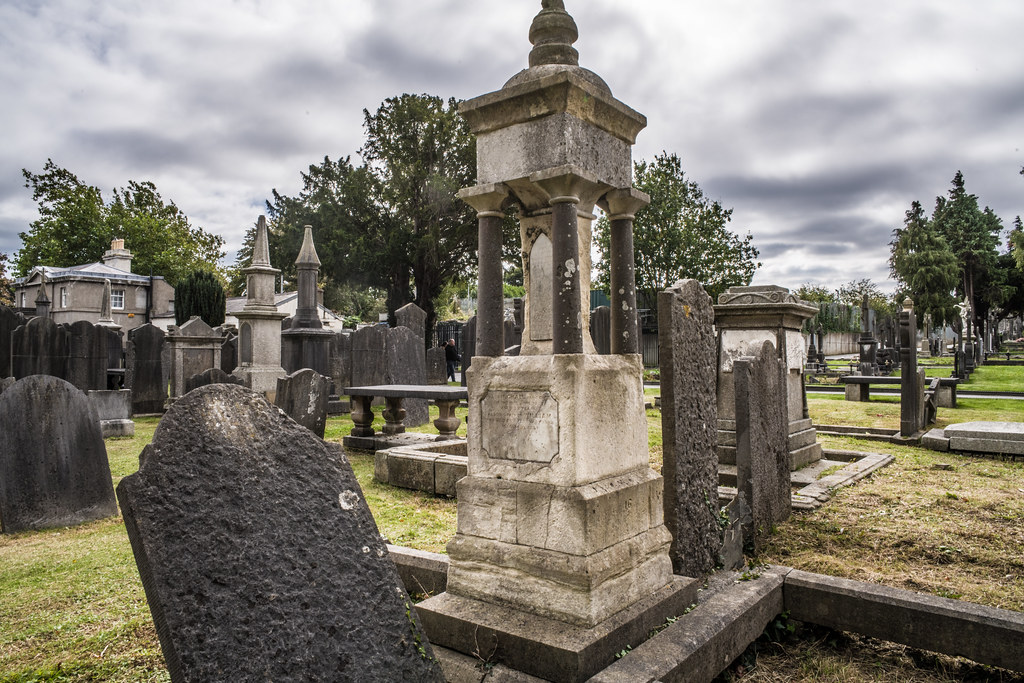 SEPTEMBER 2018 VISIT TO GLASNEVIN CEMETERY [ I USED A BATIS 25mm LENS AND I EXPERIMENTED WITH CAPTURE ONE]-144849