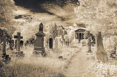 Standing II (James Etchells) Tags: arnos vale garden cemetery bristol city urban ir infrared sepia old antique photographic toning effect 18th century eighteenth nikon photography tomb tombs landscape landscapes sky clouds colour color architecture ancient experiment exploring past heritage natural world nature light south west england uk britain monument abandoned overgrown statue