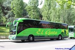B_7040_01 (buspmi) Tags: elgato iveco