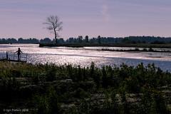 posing (soundmoods) Tags: nature posing silhouet sun backlight sunnyday water reflection shadows landscape tree