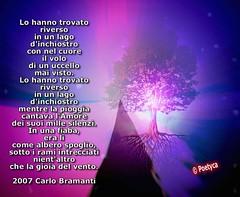 ★ cღPoeti amici ღ★ (Poetyca) Tags: featured image poeti amici