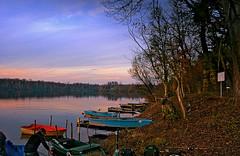 Fischerboote an einem See bei Eggenstein (MHikeBike) Tags: see landschaft abend sonnenuntergang sunset farbig himmel wasser boote büsche wald rheinebene rhein lake landscape eve coloured sky water