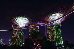 Marina Bay Sands and Gardens by the bay at night (Veselina Dimitrova) Tags: marina bay sands hotel gardensbythebay marinabaysands singapore atnight night nightphotography nightphoto lights light colourful bestoftheday beautiful bestphotographers bestvacation greatphotographers goodtime gardens trees supertree palmtrees summer fun