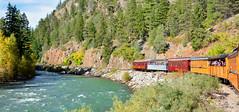 Animas River (M McBey) Tags: usa colorado rockies durango silverton railroad railway animas river trees