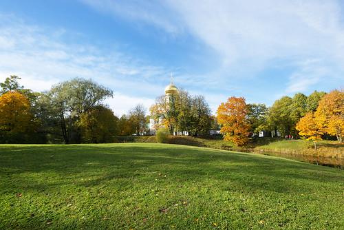 Autumn sunny landscape.
