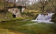 Molino (roberrodriguez1) Tags: cascada agua verde fresco water molino remolino paisvasco baskecountry waterfall arboles bosque