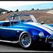 Blue Chrome Cobra