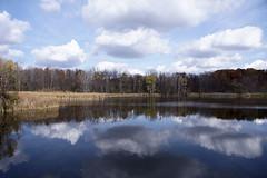 Maybury-State-Park-Pond_Northville-MI_10-28-2011e (Count_Strad) Tags: mayburystatepark maybury state park northville mi michigan pond lake