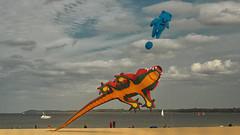 Kite festival at the beach (Ostseeleuchte) Tags: kitefestival drachenfest beach travemünde strand balticsea ostsee drachen