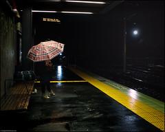 13 min (niggyl (well behind)) Tags: darlingharbour sydneyaustralia damnbutthisisexcitingstuff fujifilm fujinon fujifilmx70 x70 rain fogandrain barangaroo pyrmontbay sydneyharbour sydney vividsydney2018 internationalconferencecentre sydneylightrailproject raining raindrops yellow umbrella streetlight tramstop night nightlights nightphotography moody atmospheric