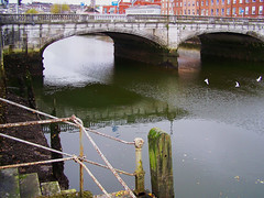 100_8055 (MiDEA foto projekt : Hollace M Metzger) Tags: ireland countycork munster éire republicofireland airlann cork contaechorcaí corcaigh