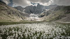 vignemalle II (arnolamez) Tags: pyrenees vignemalle mountain montagne paysage landscape