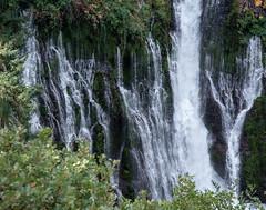 Falls_119892 (gpferd) Tags: water waterfall burney california unitedstates us