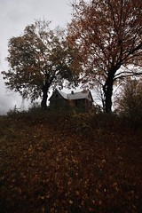 Red House (SkylerBrown) Tags: abandoned autumn creepy dark fall farmhouse gothic haunted leaves moody october orange overcast red spooky trees