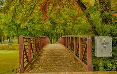Autumn at the Footbridge (kendoman26) Tags: hdr nikhdrefexpro2 autumn autumncolors fall fallcolors imcanal iandmcanal imcanaliandmcanal morrisillinois nikon nikond7100 tokinaatx1228prodx tokina tokina1228