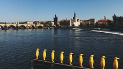 A view of Charles Bridge and Vltava river (Strunkin) Tags: prague czechrepublic vltava river charles bridge