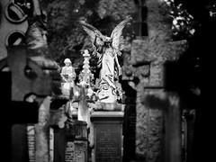 Graveyard Angel (RichardK2018) Tags: ipad adobephotoshopexpress snapseed zuiko40150mmf28 olympusem1mk2 mortality cemetery graveyard nottingham rockcemetery got