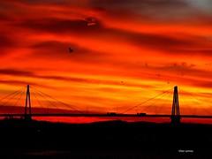 A ponte (verridário) Tags: ponte bridge sun sunrise sony sky céu morning morgen manhã matin dark yellow sol manana