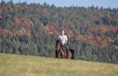 Basim_OS180351 (OliverSeitz) Tags: elbasim wachlarz elda arabian vollblutaraber pferd tier