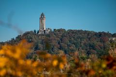 Sunshine - 10 Oct 2018 - 31 (ibriphotos) Tags: sunshine autumn blue indiansummer leaves wallacemonument orange stirling
