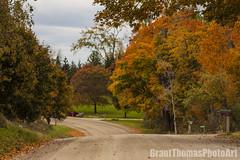 IMG_7581_result (ferrariartist) Tags: delorean gullwing automobiles automotive automobile 80s stainless car sportscar irish fall autumn ferrariartist