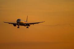 Wizz Air - Airbus A321-231 HA-LXW @ London Luton (Shaun Grist) Tags: halxw wizz wizzair airbus a321 shaungrist landing sunrise morning ltn eggw londonluton luton lutonairport airport aircraft aviation aeroplanes airline avgeek