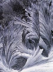 Frost II (Jeff Schneiderman) Tags: frost winter vermont patterns