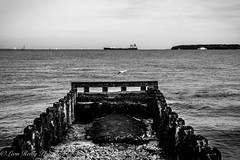 Lepe Beach, Hampshire-12 (broadswordcallingdannyboy) Tags: mono bw blackandwhite lepe lepebeach hampshire newforest dday beach mood atmosphere landscape uk southcoast leonreilly copyrightleonreillyphotography leonreillyphotography eos7d canon water coast sea seascape coastline hampshirecoast lepecountrypark seagull ship isleofwight landingcraft 1740mm