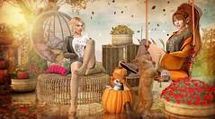 Frisky Fall (Duchess Flux) Tags: kustom9 fameshedx collabor88 uber fameshedgo fameshed theseasonsstory zenith wasabi catwa skinnery purepoison foxcity exile keke sese dreamlanddesigns jian secondlife fall autumn sl
