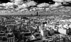 Paris in B&W / Париж в черно-белом (dmilokt) Tags: город city town dmilokt чб bw черный белый black white nikon d750 paris париж