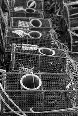 As nasas (f@gra) Tags: monocromatico monochromatic pontevedra galicia spain morrazo marine fisherman traditional tradicional pots nasas