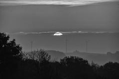 Sonnenaufgang (shortscale) Tags: sonnenaufgang sonne morgen wolke himmel windrad schwäbischealb wald baum schwarzweiss blackandwhite noiretblanc monochrome buw