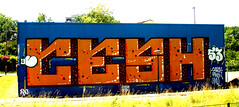 Trackside graffiti (wojofoto) Tags: graffiti streetart railway spoor spoorweg trackside nederland netherland holland wojofoto wolfgangjosten cesh