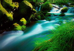 Valley stream hymn  5 (chikaraamano) Tags: mountain stream hymn green lovely moss water outdoor rocks valley creature flow ravine finally youngleaves earlysummer upstream charmed repeatedly light freely flows beauty refresh nature japan