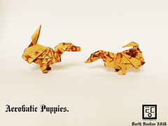 Acrobatic Puppies - Barth Dunkan. (Magic Fingaz) Tags: anjing barthdunkan chien chó dog hond hund köpek origami paperfolding perro pies пас пес собака หมา 개 犬 狗