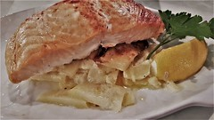 Salmon on Dauphinoise Potato. (ManOfYorkshire) Tags: salmon dauphinoise potato potatoes lemon wedge squueze parsley decioration vegetables meal lunch luncheon woods tearoom doncaster southyorkshire yorkshire england uk gb delicious worldclass cooking presentation waiter service excellent
